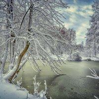 Озерцо :: Александр Бойко