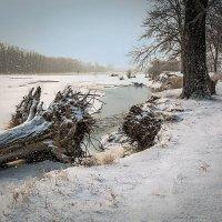 Начало зимы :: Любовь Потеряхина