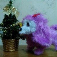 Композиция собачка с елкой. (Символом 2018 г-будет Собака). :: Светлана Калмыкова