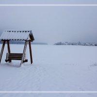 Холодный зимний этюд... :: Александр Широнин