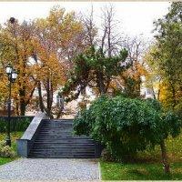 Лестница из сквера в сквер...Одесса. :: Любовь К.