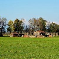 На дворе трава, на траве дрова ! :: Николай Танаев