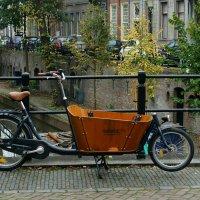 голландский грузовой велосипед :: IURII