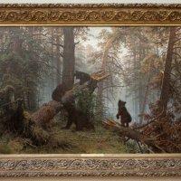 Утро в сосновом лесу :: Олег Савин