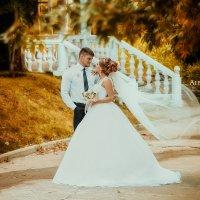 свадьба август :: Александра Гусарова
