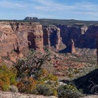 Немного другой ракурс каньона Де Шейи (Аризона, США) :: Юрий Поляков