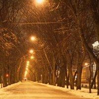 Утренняя прогулочка :: Владимир Гилясев