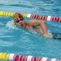 Соревнования по плаванию :: Nikolai_ _