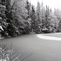 Зима :: Наталья Ястребова