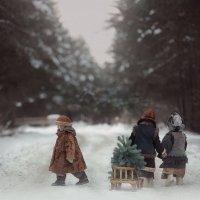 Зимняя сказка :: Надежда Шибина