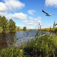 С  охотой  на  рыбалку :: Геннадий С.