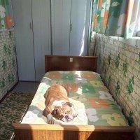 солнечные ванны :: гарифуллина нурия сагадатовна