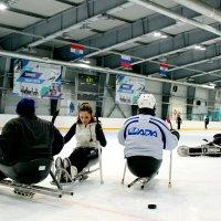 Следж хоккей.Тренировка. :: Ольга Зубова