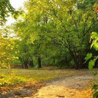 Осенний пейзаж :: Мария Панькина