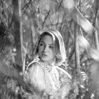 """""""Лесной портрет"""" :: Борис Лебедев"""