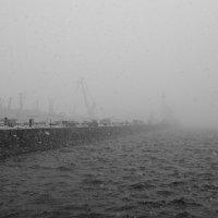 Снег идет :: Сергей Григорьев
