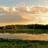 Золотой закат. :: Oleg S