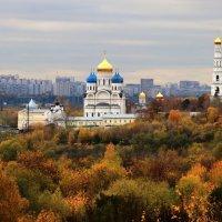 Золотая Осень в Угреше :: Евгений (bugay) Суетинов