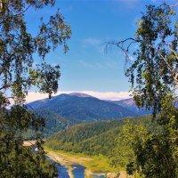 Вид в долину :: Сергей Чиняев