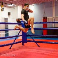 Удар коленом в голову! :: Горелов Дмитрий