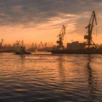 Порт Санкт-Петербург. Гутуевский ковш. :: Юрий