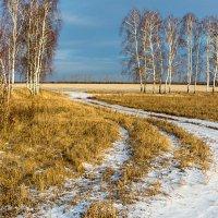 Зима, похожая на осень... :: Любовь Потеряхина