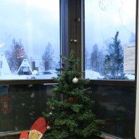 Рождество у финских гномиков :: Ольга