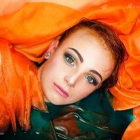 Рыжее и зеленое:) :: Фотостудия Объективность