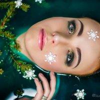 Скоро - скоро новый год :) :: Фотостудия Объективность