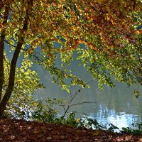 Осенний ветерок ... :: Владимир Икомацких
