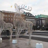 Стокгольм Королевский сад :: Swetlana V