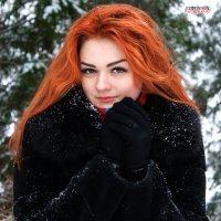 Зимний портрет :: Вячеслав К