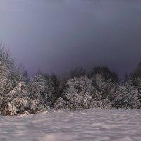 winter :: Николай Колобов