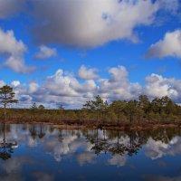 Пейзаж с облаками.. :: Татьянка *