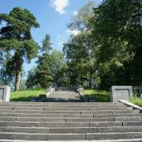 К Мариентальскому пруду спускается лестница :: Елена Павлова (Смолова)