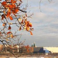 Осень :: Николай Масляев