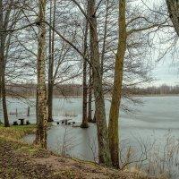 20/12/17 Зима в Восточной Пруссии :: Sergey Polovnikov