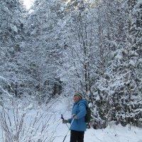 Лыжня в лесок проложена... :: Galaelina ***