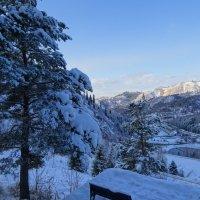 У зимы красивая походка.... :: LORRA ***