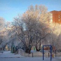 Зимний этюд. :: Мила Бовкун
