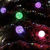 Сколько на ёлочке шариков цветных... :: Ольга