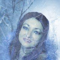Ледяная леди :: Светлана Волконская