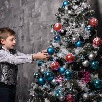 Не пора ли наряжать елку . :: Владимир