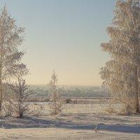 Ковер зимы  покрыл холмы, луга и долы... :: Елена Ярова