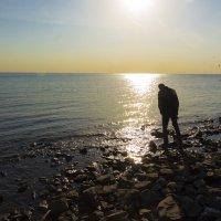 Человек гуляет по берегу :: Михаил Сергеевич Карузин