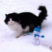 Гигантская кошка! :: Людмила (Руца)