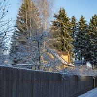 ... это в городе тепло и сыро, а за городом зима, зима, зима... :: Сергей Козырев