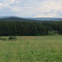 Горы, леса и поля :: Вера Щукина