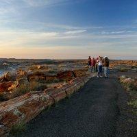 Путешествие в эру мезозоя (225 млн лет назад). В лучах заката. :: Юрий Поляков