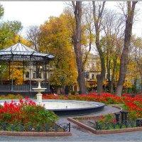 Одесские скверы.... :: Любовь К.